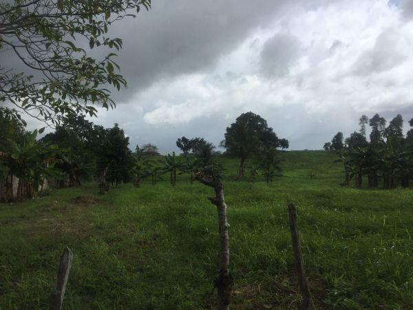 Excelente Terreno para Fines Agrícolas o Desarrollo Ecoturístico | Bienes Raices Republica Dominicana