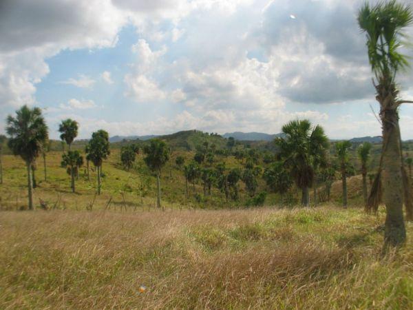 Finca con servicio de agua a solo metros de la represa de agua | Bienes Raices Republica Dominicana